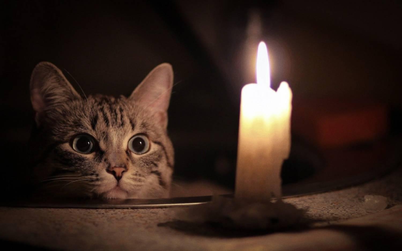 Масштабное отключение электричества в Симферополе: где не будет света?